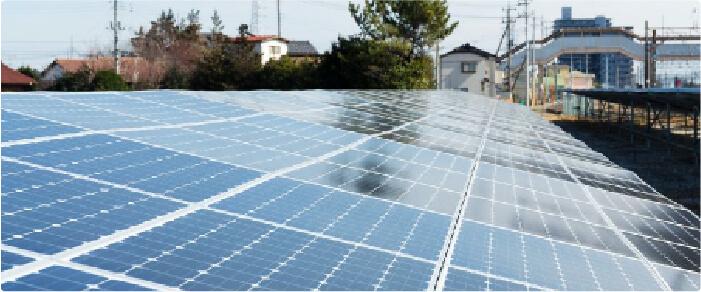 Mini huertos impulsores comunidad solar